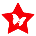red star BOM icon